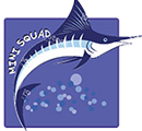 DSA Mini-squad